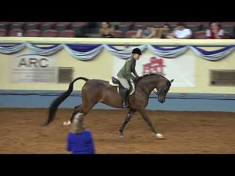 DA Sovereign - 2017 National Champ