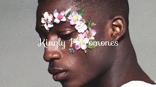 Royalty Pheromones - Get the Pheromones of a King | Subliminal