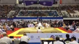Чемпионат Мира 2016 (Sokolovskiy 🇺🇦)