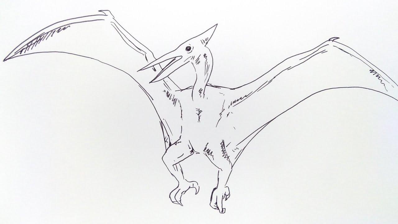 Cara Menggambar Dinosaurus Petroducktyl How To Draw Petroducktyl