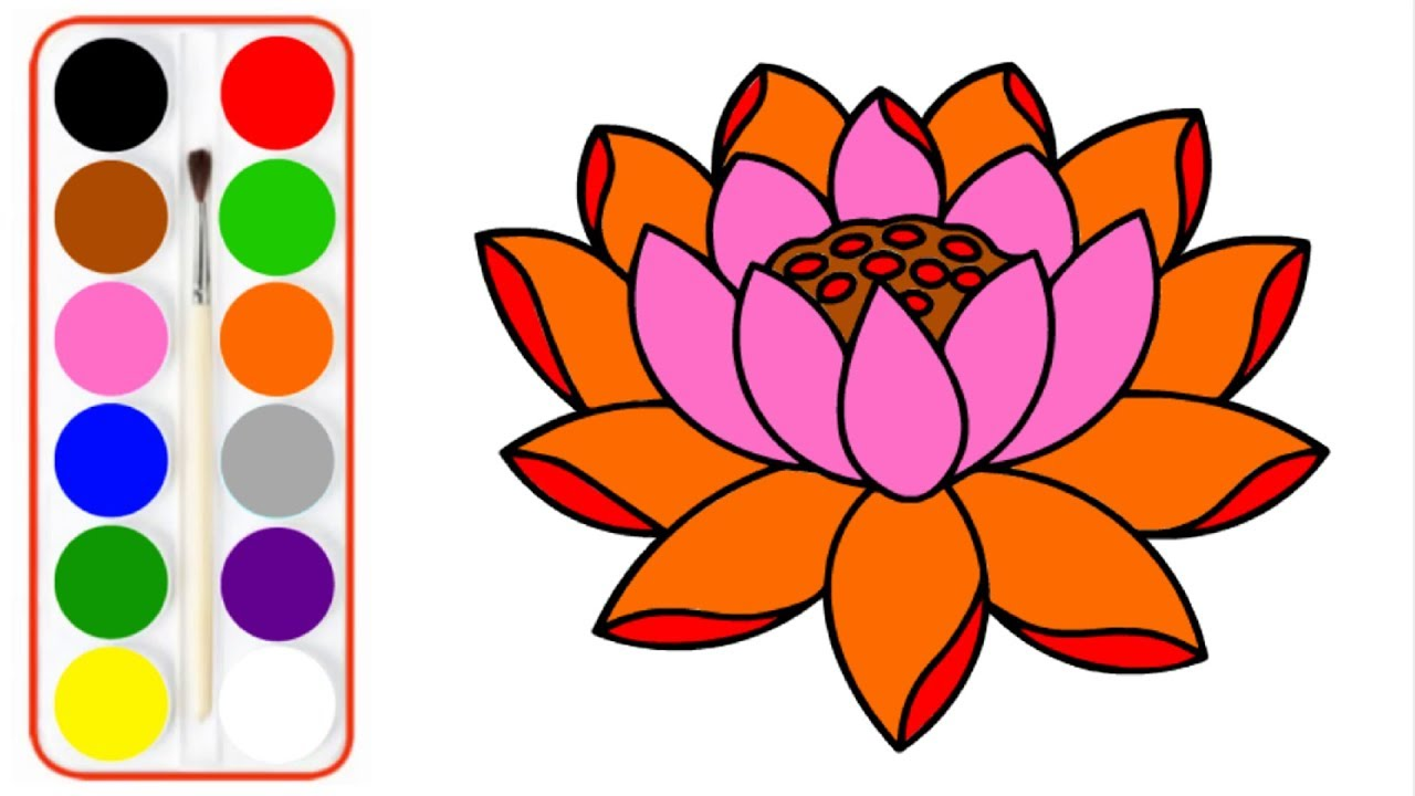 Lotus Flower Drawing Easy Flowers To Draw Step By Step Flowers