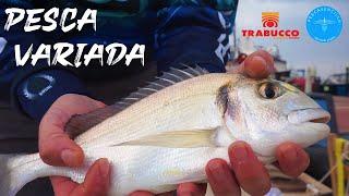 Pesca variada Corcheo mar y pesca a fondo