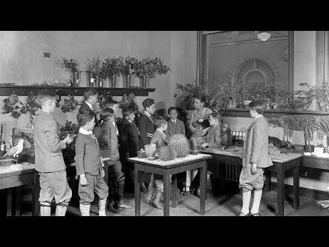 From the Archives - The School Service of the American Museum of Natural History (silent)