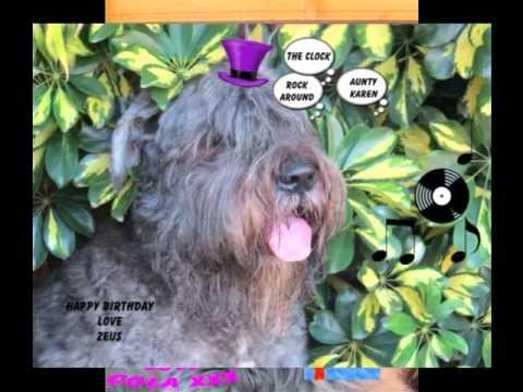 Nutty Bouviers. HAPPY BIRTHDAY KAREN XXX