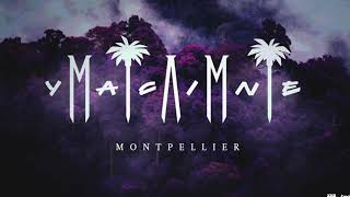Miami Yacine - Montpellier