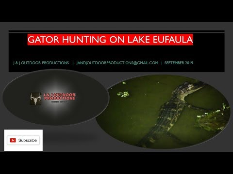 Lake Eufaula Alabama Gator Hunt September 2019