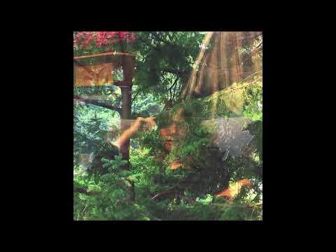 Jennifer Castle – Angels of Death (Official Audio)