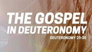 Deuteronomy 29-30