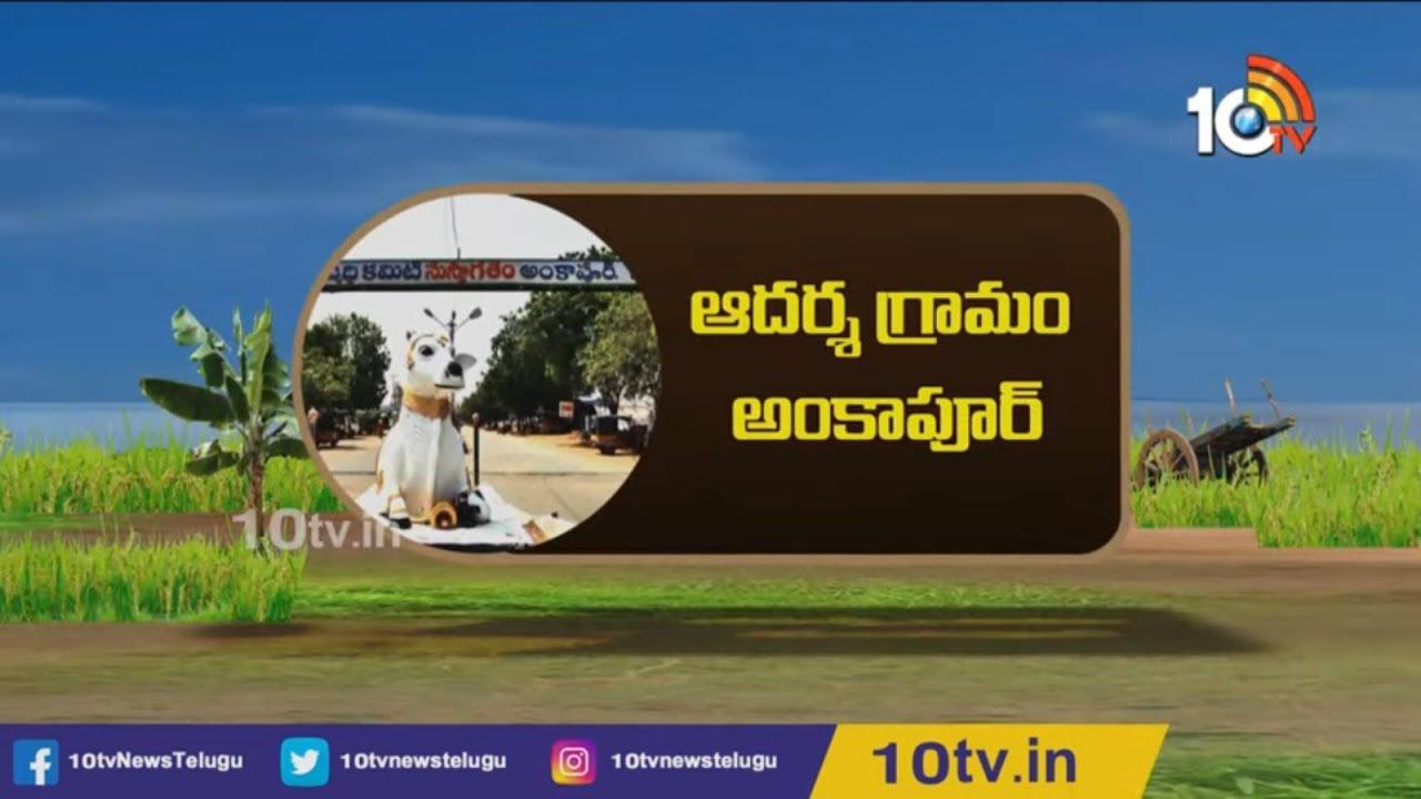 Download Special Story On Ideal Village Of Telangana ''Ankapur''   Matti Manishi   10TV News