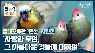 열대조류관 '랜선'사진전, '사랑과 우정, 그 아름다운 것들에 대하여'  Photo exhibition of 'Lan'