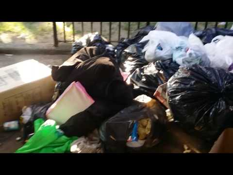 NYCHA Gouverneur Morris houses Bronx New York the real deal