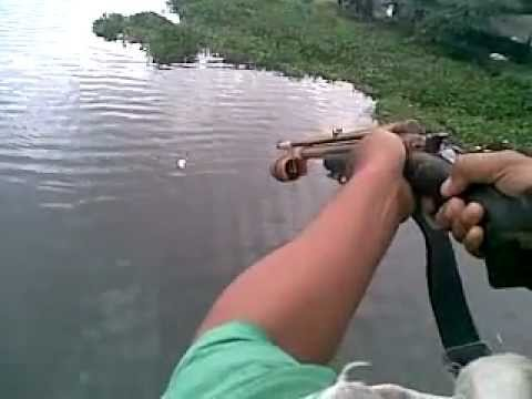 air rifle fishing big fish