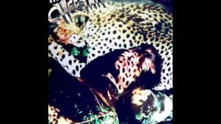 """Brad Walsh - """"Cheetah (Soundline Club Mix)"""""""