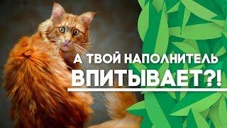 Виды наполнителей для кошек