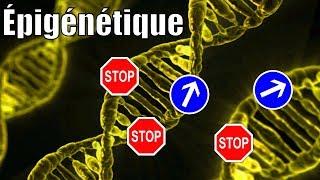 Il n'y a pas que les gènes dans la vie ! L'épigénétique, avec P'tite Jane — Science étonnante #54