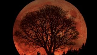 WARNING! SUPER BLUE BLOOD MOON AND RITUALS TO OCCUR TODAY... (SCIENCE TECHNOLOGY)