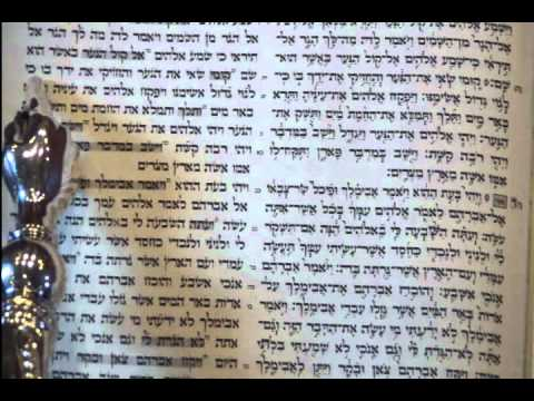 Torah Reading 1st day Rosh Hashanah Rabbi Weisblum קריאת התורה ראש השנה יום א