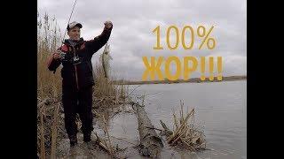 Горячий ключ отдых и рыбалка на базе отдыха Клёвое место