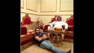 CRAZY WILD PETS in the wealthy life of ARABS