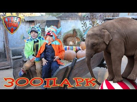 ЗООПАРК. Одесса 2015. Гуляем с детьми. The ZOO in Odessa, Ukraine