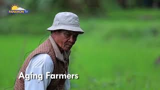 AGRIKULTURA   Rice-Centric Model