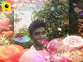 Indian Funny Videos, WhatsApp Status - 4Fun Whatsapp Status Video Download Free