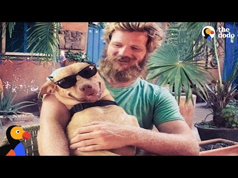 Lucky Dog Travels Central America With Best Dad | The Dodo