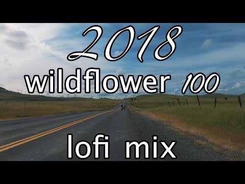 chill lofi mix ♫ 2018 Chico Wildflower Century Ride | 4K