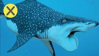 10 Extrañas criaturas extintas