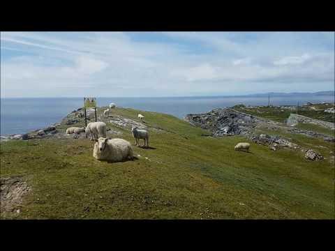 West Cork trip, 3 rd day, Sheep's Head Way, Ireland 2017