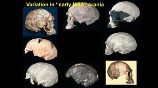 CARTA: The Origin of Us -- Chris Stringer: Fossil Record of Anatomically Modern Humans