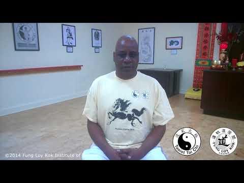 Spinal Cord Injury and the Taoist Tai Chi® arts   Spring 2014