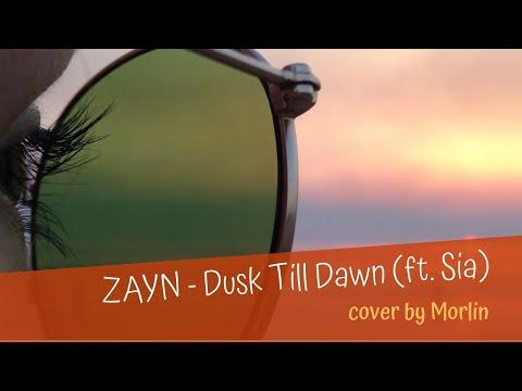 ZAYN - Dusk Till Dawn ft. Sia (Cover by Morlin)