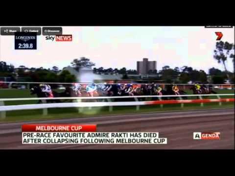 Melbourne Cup 2014 Horse Dies