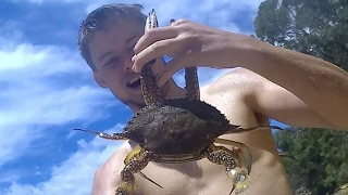 How To CATCH BLUE SWIMMER CRABS Using POTS!!!
