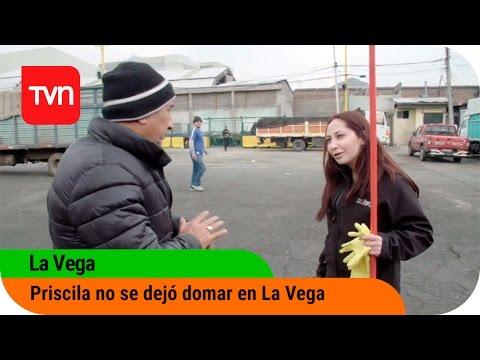 La Vega | E7: Priscila no se dejó domar en La Vega