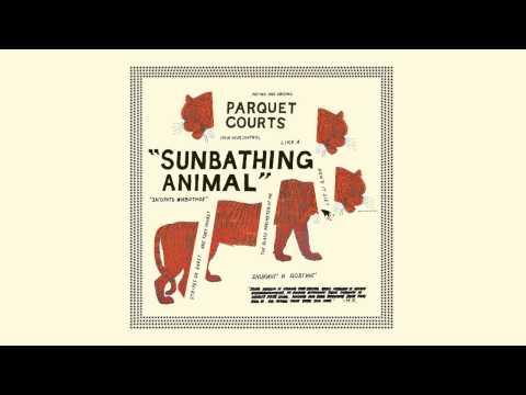 "Parquet Courts ""Sunbathing Animal"""