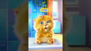 Песня под названием не Танцуй исполнители Open Kids исполняет наш котик Джинджер