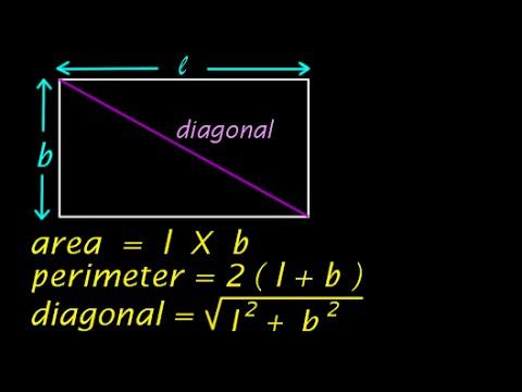 Mensuration | Fundamentals of Rectangle | Area Perimeter Diagonal | video in HINDI | हिंदी