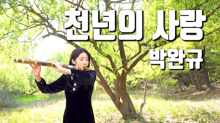 천년의 사랑 - 박완규 커버 대금연주 l 노래방에서 남자들이 많이 부르는 애창곡 국악연주🎵 DAEGEUM COVER 👑퓨전국악 퀸