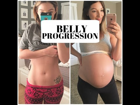 PREGNANT BELLY PROGRESSION