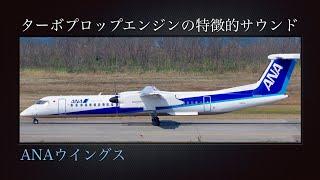阿賀野川左岸堤防 B滑走路28R 離陸 Camera : SONY HDR-AX2000 Microphon...