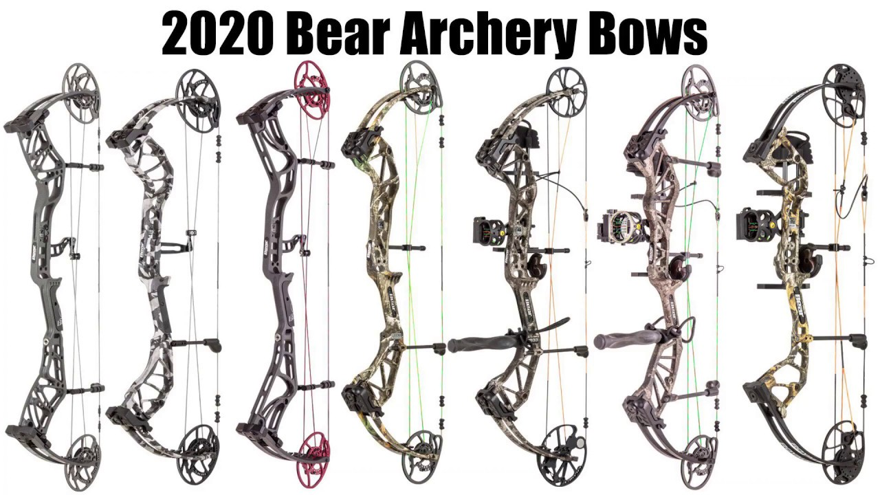 Best Compound Bow 2020.2020 Bear Archery Lineup Preview Status Eko Divergent Eko And More