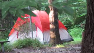 Camping in Warren Coขnty New Jersey on abandoned site