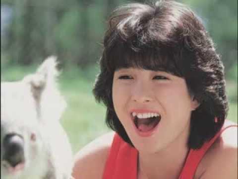 コアラを見て嬉しそうに大笑いする河合奈保子