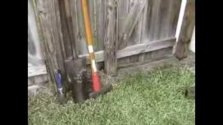 How to stop dogs digging under your fence, gate, or garden