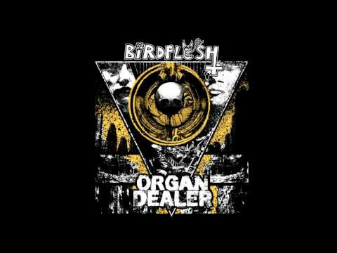 Birdflesh / Organ Dealer - split CD FULL ALBUM (2017 - Grindcore / Deathgrind)