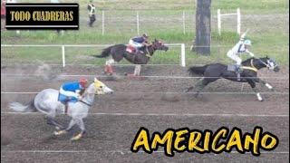 🏇 AMERICANO - Final Copa Challenger - Vera (25-11-18)