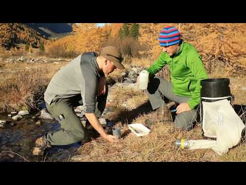 Stream intermittency in the Alps (project at Eawag)