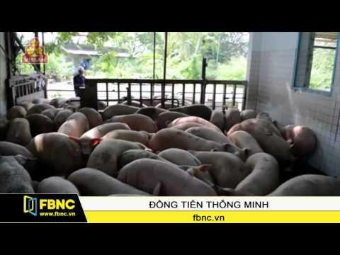 FBNC-Vệ sinh an toàn thực phẩm trong bối cảnh hội nhập (P1)